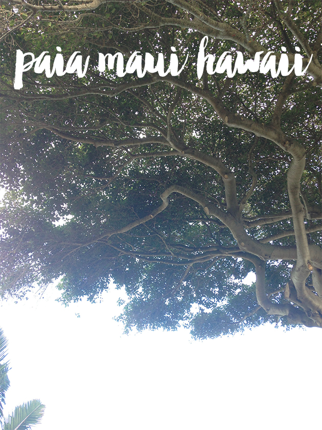 travel : guide to paia, maui, hawaii
